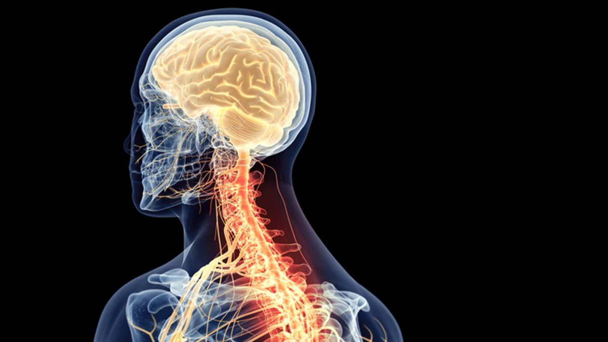 Spinal Cord Injury - cervical - CI C2 C3 C4 C5 C6 C7